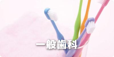 一般歯科 幸田 歯医者/幸田 歯科医院