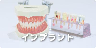 インプラント 幸田 歯医者/幸田 歯科医院