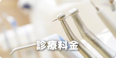 診療料金 幸田 歯医者/幸田 歯科医院